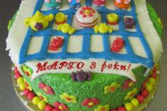 zakaz-tort-chernigov (48)